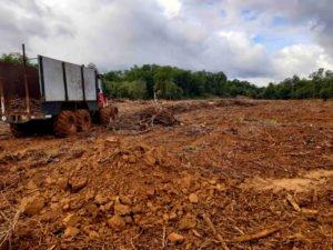 Camión llevando troncos de Ríoa Solia