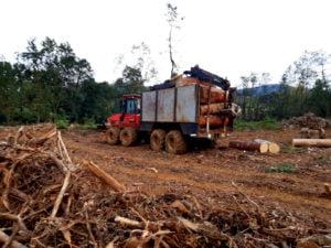 Camión con troncos
